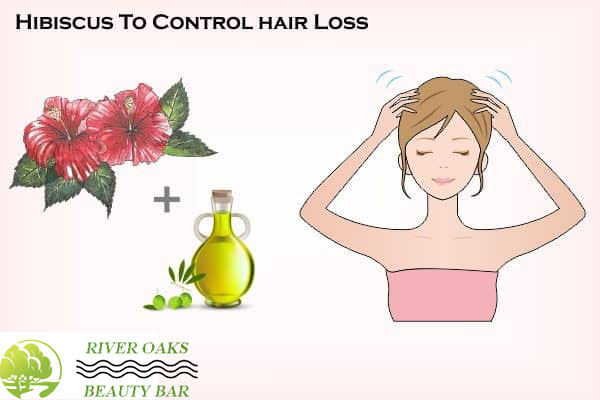 hibiscus-to-control-hair-loss
