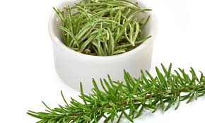 Rosemary for Boost Your Brainpower