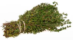 Thyme for Boost Your Brainpower