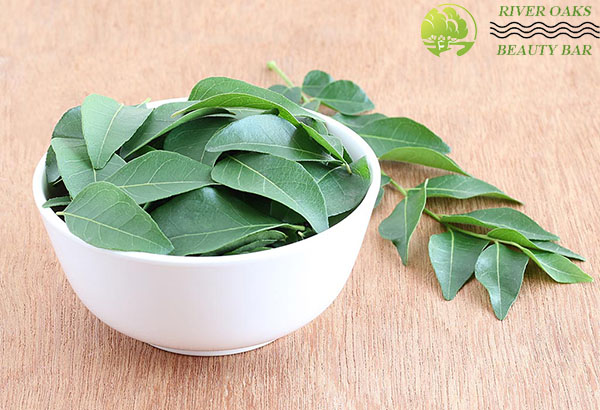 curry-leaves-for-obesity-and-weight-loss