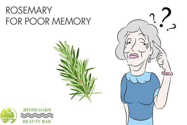 rosemary-for-poor-memory